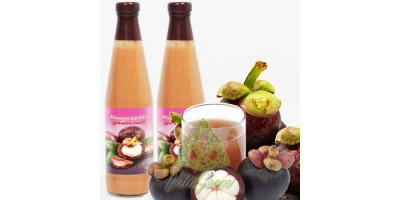 Pulpa de fructe de Mangostan 500ml